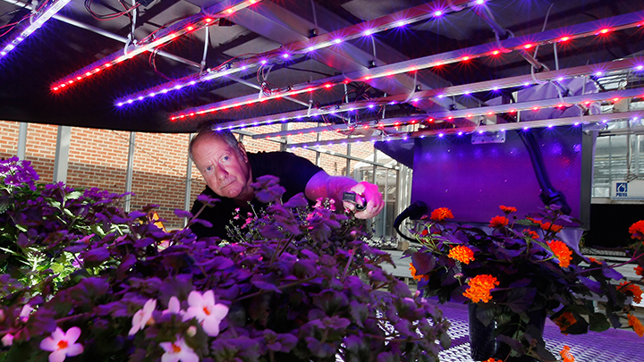 Two men are pleased with the Philips LED propagation lights above the crops at Purdue University
