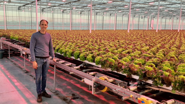 Philips Horticulture LED solutions from Signify