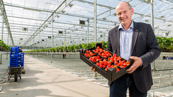 Udo van Slooten, Business Leader Horticulture at Signify