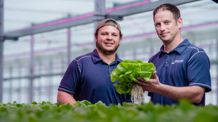Great Lakes Growers chose Philips as the best LED grow lights for herbs