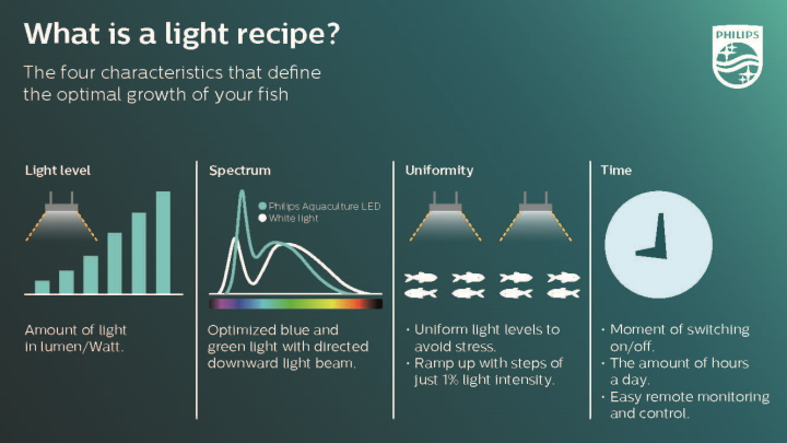 what is light recipe infographic